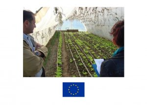 Promotion of self-employment in agriculture through technical assistance and market linkages