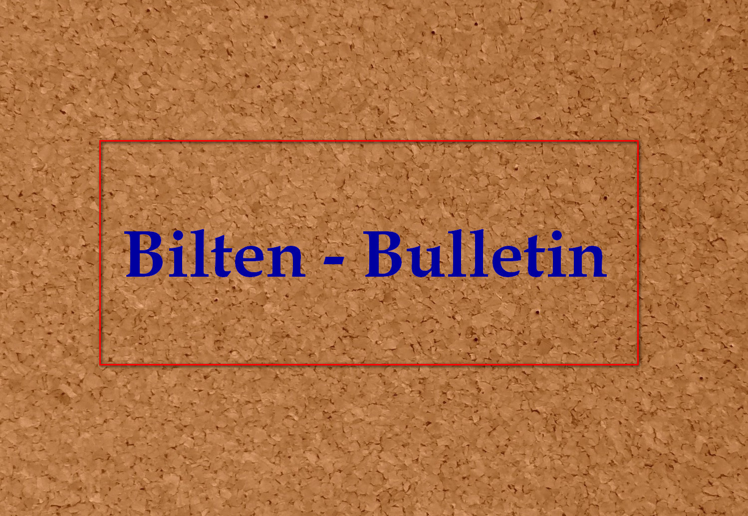 """Bulletin of the project """"Co-processing of municipal waste…"""" 4"""
